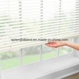Blinds de Basswood Slal de liga funcional de madeira (SGD-Blind-1063)