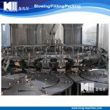 Piccola pianta del macchinario dell'acqua minerale costata con Ce