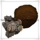 자작나무 수피 추출 Betulin 50%-98% 의 Betulinic 산