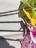 인공적인 나비 난초 Flores Artificiales 결혼식 훈장 홈 축제 훈장이 인공적인 난초에 의하여 실제적인 접촉 꽃이 핀다