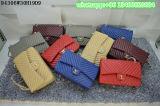 A forma a mais nova das mulheres do fabricante ensaca saco de ombro da trouxa o únicos/bolsa/branco/vermelho/preto/azul/amarelo