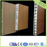 Panneau en aluminium de nid d'abeilles utilisé par Cleanroom de poids léger
