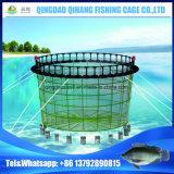 [تيلبيا] سمكة يزرع يعوم [إك-فريندلي] دائرة شكل سمكة يزرع قفص في الصين