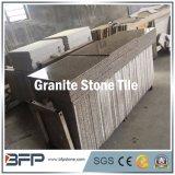 Azulejos del granito y del mármol para la decoración del suelo y de la pared