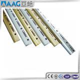 Profili di alluminio personalizzati del testo fisso delle mattonelle