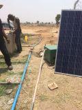 900W 태양 에너지 수영풀 펌프, 관개 펌프
