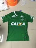 Pullover verde di gioco del calcio di Chapecoense