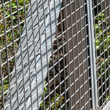 Acoplamiento de alambre soldado alambre que rediseña en venta