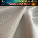Rayas de tafetán de nylon de la arruga de la tela, hilados texturados de Nylon Dobby rayado de la tela
