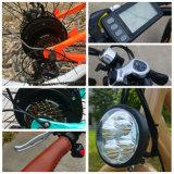نساء يهذّبون سمين إطار العجلة [500و] [سمسونغ] بطارية شاطئ/ثلج دراجة كهربائيّة