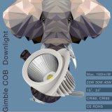 PANNOCCHIA LED Downlight di 100lm/W CRI80 CRI90 20W 30W 40W Gimble con 130mm tagliato