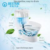 Salle de bains lavant la toilette en céramique d'une seule pièce