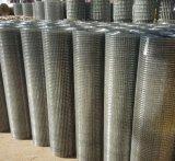Le PVC a enduit le treillis métallique soudé galvanisé, Hollande a soudé le treillis métallique