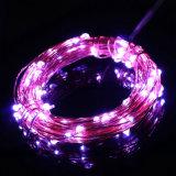 Luzes estrelados da corda do Natal do diodo emissor de luz da potência do USB com os 20 mini diodos emissores de luz do micro no fio de prata longo de 6.6FT