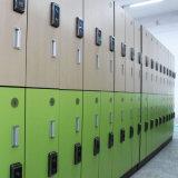 Grosses kompaktes HPL Z Form-Schließfach Lot-niedriger Preis-China-