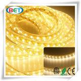 5050 옥외 LED 줄무늬 빛 120V 3000k