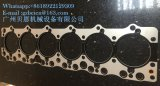Pista genuina de la junta de Isuzu 6bd1t para el motor Japón del excavador