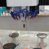 Machine de développement de forme en verre de commande numérique par ordinateur