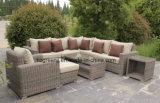 記憶のコーヒーテーブルが付いている贅沢な円形の柳細工のソファーは0158 5mm円形の藤をセットした