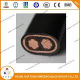 2X2/0 câble AWG concentrique/câble isolé en polyéthylène réticulé concentrique/PE Câble concentriques Sertification isolés CEI