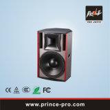 Het Systeem van de luidspreker voor Club wijs-12 van de Zaal KTV van de Muziek