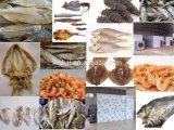 Essiccatore industriale dell'oloturia di prezzi della fabbrica della Cina, forno dei frutti di mare
