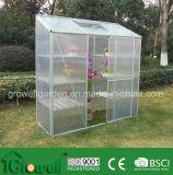 中型の趣味の温室(ME627-3)