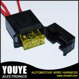 De de aangepaste Uitrusting van de Bedrading van de Assemblage van de Uitrusting van de Draad Elektrische Automobiel en Assemblage van de Kabel