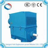 Motore elettrico ad alta tensione di Ykk 1200kw