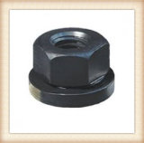 Steel From Big Factory의 중국 High Quality Flanged Nuts