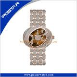 Het speciale Horloge van de Luxe van de Dames Diamands van de Vorm Volledige