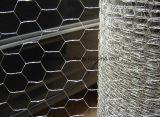O hexagonal galvanizado/frango de malha de arame revestido Wire Mesh