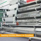 Galvanisierter Stahlverstärkendraht ein Rahmen für Huhn-Schicht