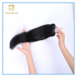 Kundenspezifische Strahl Blace der Farben-Qualitäts-#1 Doppeltes gezeichnete Mikroring-Extensions-Haare mit Fabrik-Preis Ex-017