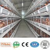 Горячий тип автоматическая клетка h надувательства цыпленка для фермы слоя