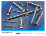 Schrauben-Anker, Schlüsselanker, sah Anker, Eilnagel-Anker, Decken-Anker, Nylonanker, Stahlstecker, Schnitt-Anker, der Hammer-Laufwerk-Anker, angepasst