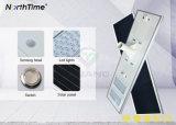 Réverbère solaire intelligent complet de 100W DEL avec le contrôle de détecteur