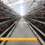 Оборудование цыплятины цыпленка клетка цыпленка слоя батареи рамки