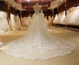 Aoliweiyaのトリムのレースの錯覚のDimondの白いウェディングドレス