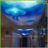 Innenerneuerung Belüftung-Schlafzimmer-Import-Wand-Aufkleber