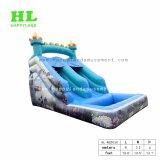 Реальные океана замок надувной слайд