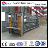 Ferme avicole en plastique de cage de poulet de cadre de transport de couche de bétail, petit matériel de la ferme d'animaux