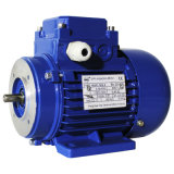 1hma Series Ie1 Aluminium Housing Electric Motor