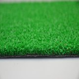 De aspecto natural clásico patio Putting Green (GFE)