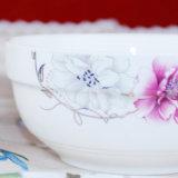 Het Franse Ceramische Vaatwerk van de Keuken van China van het Been van het Vaatwerk Nieuwe
