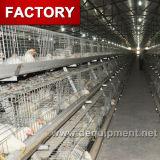 Cage automatique de couche de poulet de ferme avicole de l'Ouganda à vendre