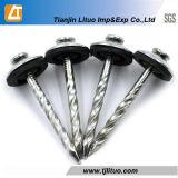 黒または磨かれたか、または亜鉛によってめっきされるリングのすねの釘
