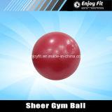 Sfera di forma fisica di qualità di ginnastica con la pompa per l'esercitazione