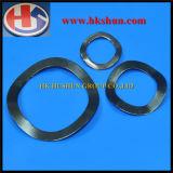 Rondelle élastique de qualité supérieure en provenance de Chine (HS-SW-0030)
