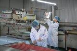 Silk Hochtemperaturbildschirm Glas angestrichen mit RoHS Ceritificate